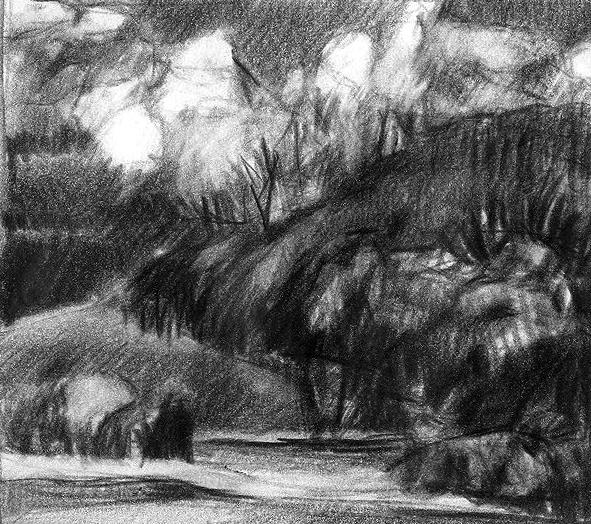 paysage3