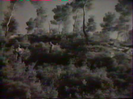 vlcsnap-2016-01-05-10h49m46s154